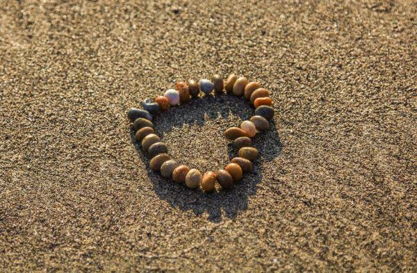 healing trauma and loss bridges of hope