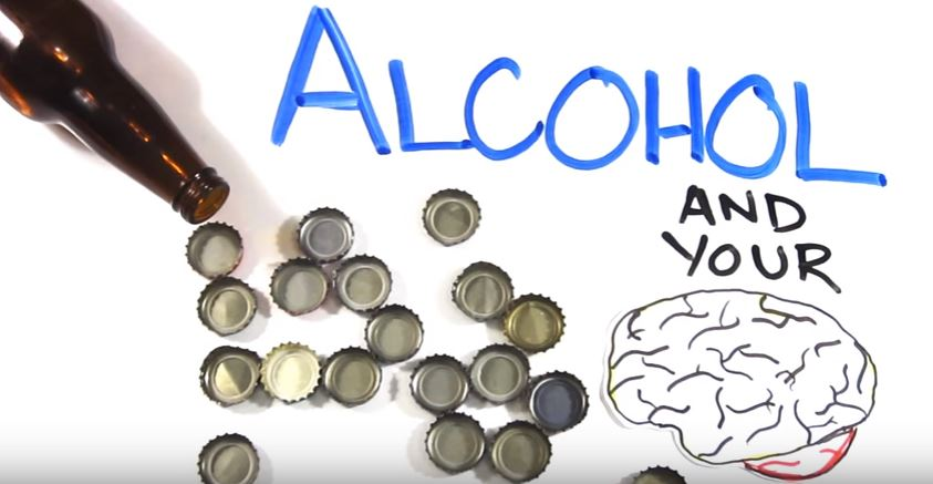 alcohol-your-brain-animated-video
