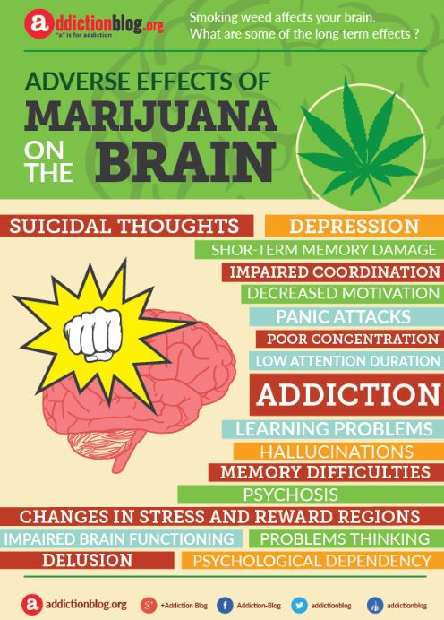 marijuana-drug-facts